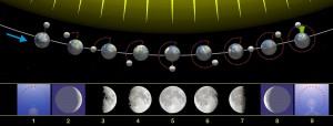 Calcolo mentale della fase lunare